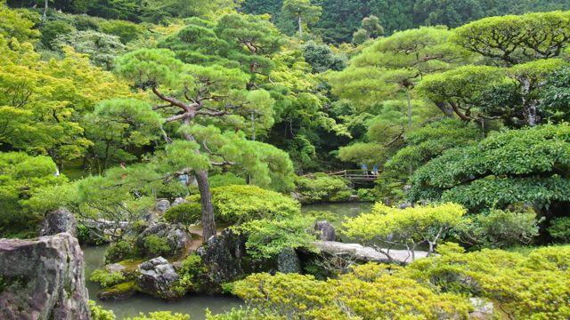 Garden around Gin kaku-ji