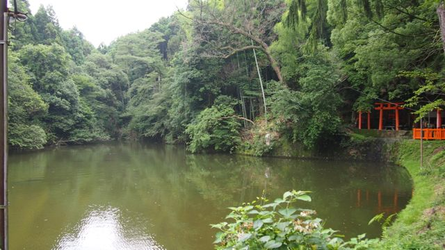 Pond about half way to the top of Fushimi Inari