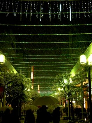 Kokubuncho, green lights
